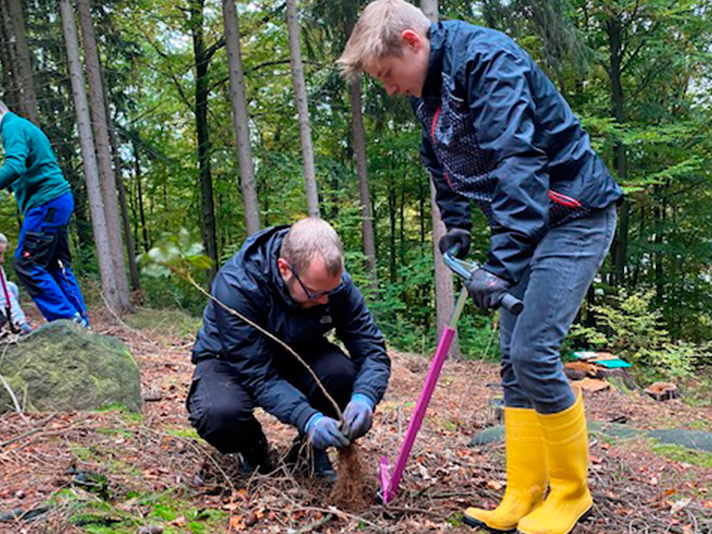 Ein Auto - ein neuer Baum #machenstattmeckern 0019