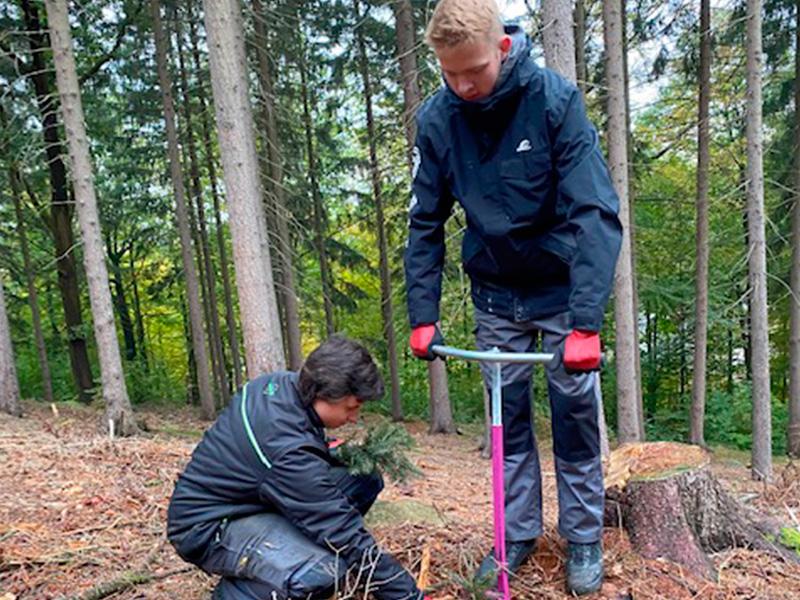 Ein Auto - ein neuer Baum #machenstattmeckern 0023