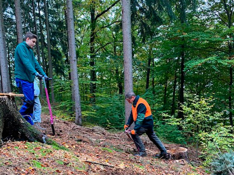 Ein Auto - ein neuer Baum #machenstattmeckern 0029
