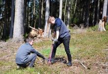 Mit tatkräftiger Unterstützung vom Sachsenforst haben unsere Azubis heute den zweiten Teil unserer 3.000 versprochenen Bäume in den Boden gebracht.