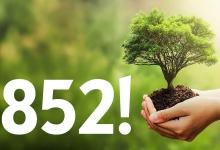 852! Ein Auto - ein neuer Baum!